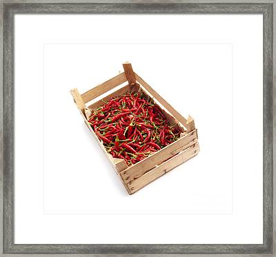 Crate Of Chili Framed Print by Sinisa Botas