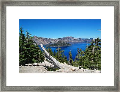 Crater Lake And Fallen Tree Framed Print by Debra Thompson