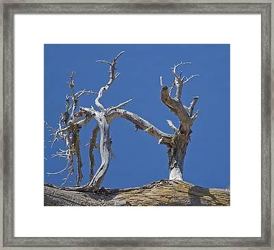 Crater Lake Kick Boxers Framed Print