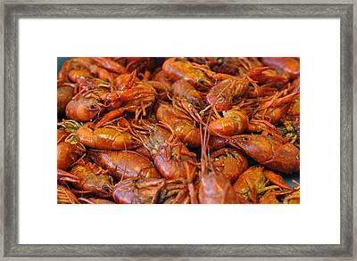Crawfish Boil Framed Print