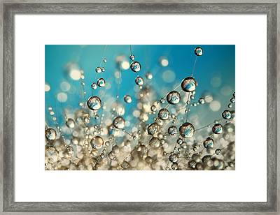 Framed Print featuring the photograph Crazy Cactus Droplets by Sharon Johnstone