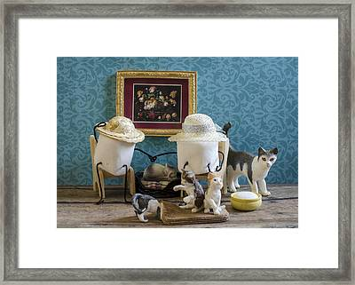 Crazy Cat Mallows Framed Print by Heather Applegate