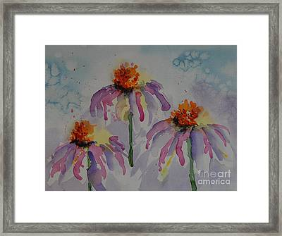 Crazy Cone Flowers Framed Print by Gretchen Bjornson