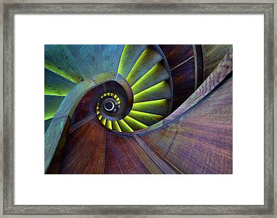 Crazy Eye Framed Print