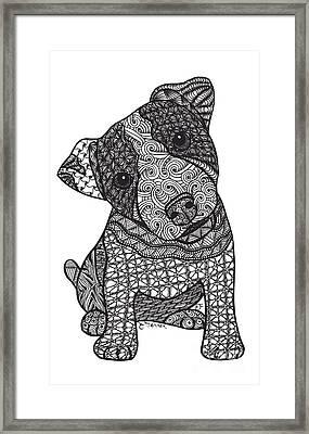 Crazy Jack - Jack Russell Terrier Framed Print
