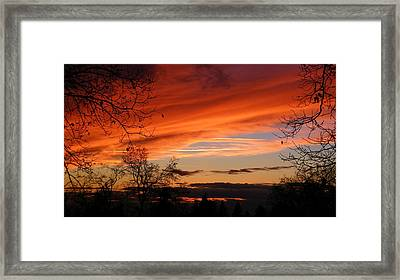 Creamsicle Framed Print by Tom Mansfield