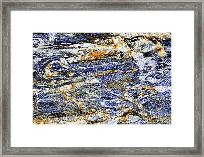 Creamy Contrasts Framed Print