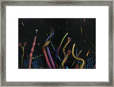 Creation Framed Print by James W Johnson