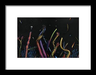 Genesis Framed Prints