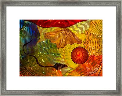 Creation Of Life Framed Print by Steven Heap