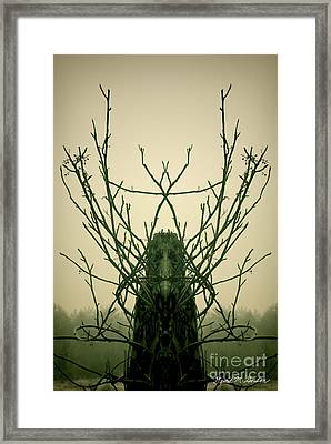 Creature Of The Wood Framed Print by David Gordon