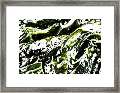Creatures Of The Ocean Framed Print by Kim Lessel