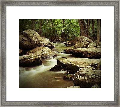 Creek At St. Peters Framed Print