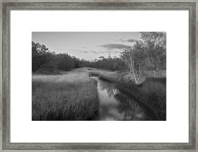 Framed Print featuring the photograph Creek At Wilmington Island by Frank Bright