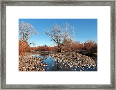 Creek Bed Framed Print by David Taylor
