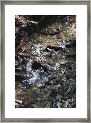 Creek Bed Framed Print by William Norton