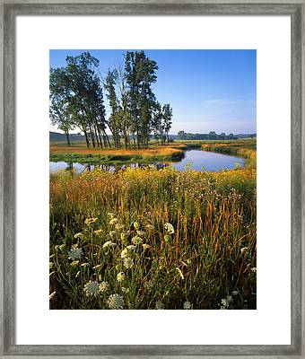 Creek Bend Framed Print