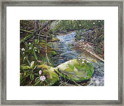 Creek -  Beyond The Rock - Mountaintown Creek  Framed Print