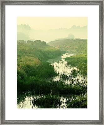 Creek I Framed Print by Sarah Boyd