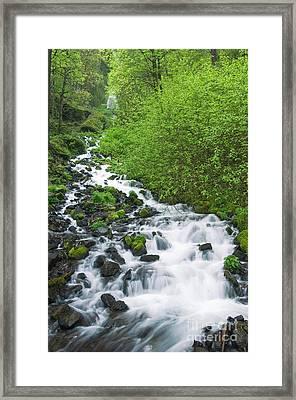 Creek In Oregon Framed Print by John Shaw