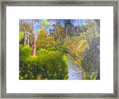Creek In The Bush Framed Print by Pamela  Meredith