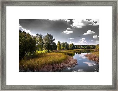 Creek In The Garden Framed Print