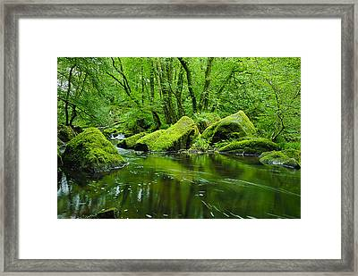 Creek In The Woods Framed Print by Chevy Fleet