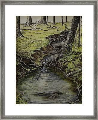 Creek  Framed Print by Janet Felts