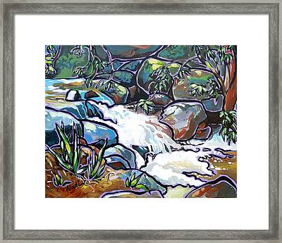 Creek Framed Print by Nadi Spencer