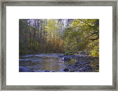Creek Of Native Times Framed Print by Tim Rice