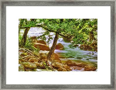 Mountain - Stream - Creek Side Framed Print by Barry Jones
