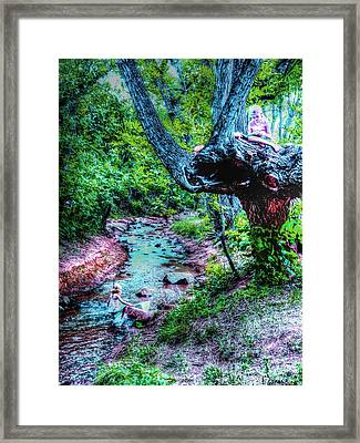 Framed Print featuring the photograph Creek Time Enchantment by Lanita Williams