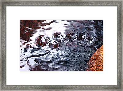 Creek Twirls Abstract Macro Framed Print