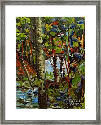 Creek Walking Framed Print by Charlie Spear