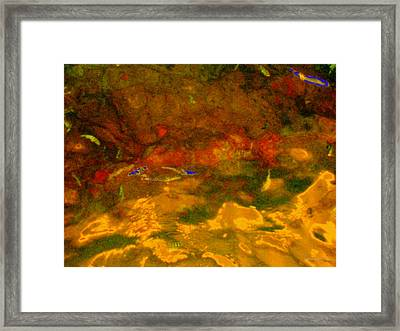 Creekwater Abstract 3 Framed Print by Deborah  Crew-Johnson