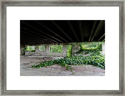 Creepin Framed Print by Off The Beaten Path Photography - Andrew Alexander