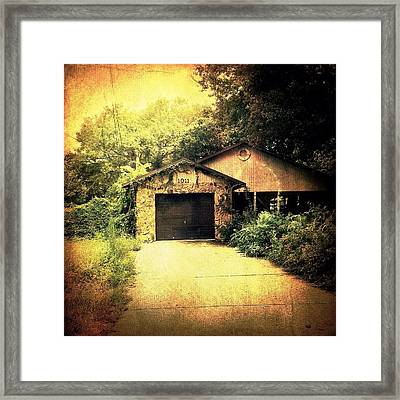 Creeping Vines Framed Print by Beth Williams