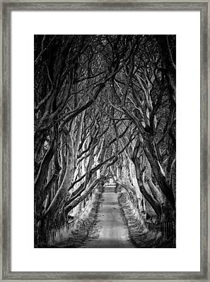 Creepy Dark Hedges Framed Print