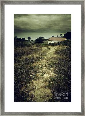 Creepy Trail Framed Print by Carlos Caetano