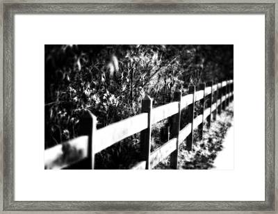 Creepy Woods Framed Print