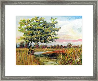 Crepe Myrtle In The Wetlands Framed Print