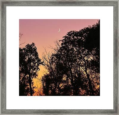 Cresent Beyond Framed Print by Bruce Bley