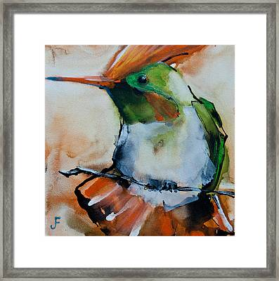Framed Print featuring the painting Crested Croquette Hummingbird by Jani Freimann