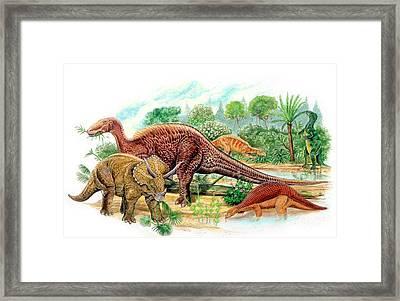 Cretaceous Herbivorous Dinosaurs Framed Print
