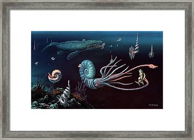 Cretaceous Marine Animals Framed Print