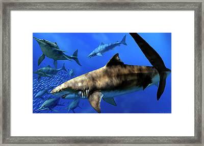 Cretoxyrhina Prehistoric Sharks Framed Print by Jaime Chirinos