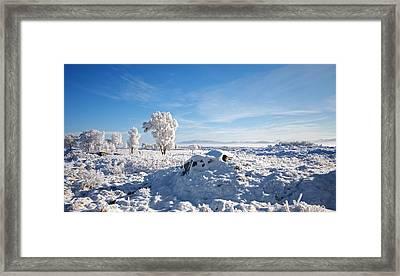 Crianlarich - Sunlit Snow Framed Print by Pat Speirs