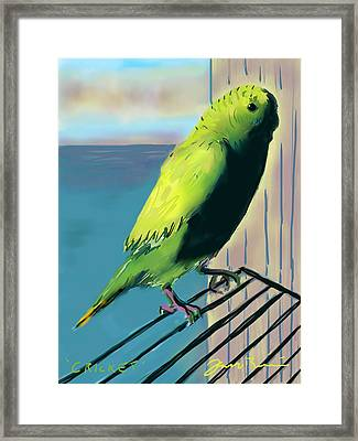 Cricket Framed Print by Jean Pacheco Ravinski