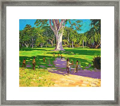 Cricket Match St George Granada Framed Print by Andrew Macara