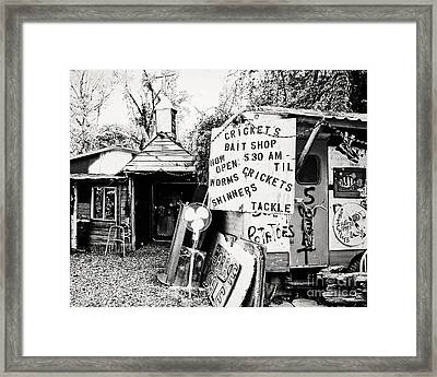 Cricket's Bait Shop Framed Print by Scott Pellegrin